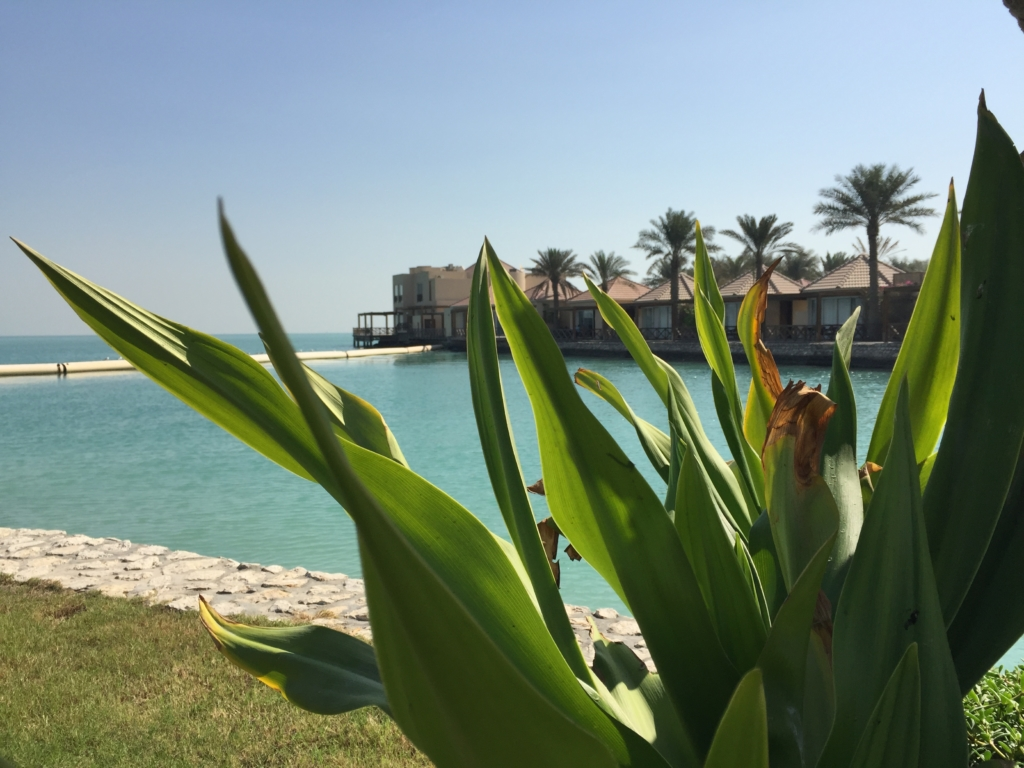 Al Bander Beach Resort